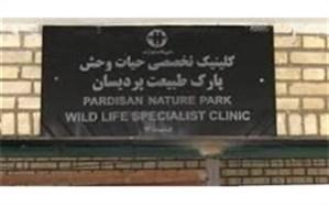 تکذیب تعطیلی کلینیک و مرکز قرنطینه حیات وحش پردیسان