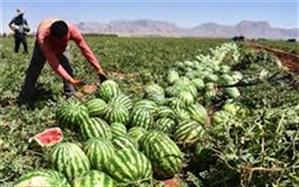 برگشت ۶ واگن هندوانه صادراتی ایران از ترکیه