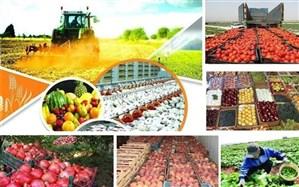 سازمان برنامه موظف به تخصیص اعتبار برای خرید محصولات کشاورزی در بودجه سالانه شد