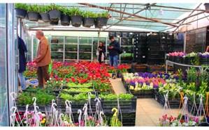 بازار گل محلاتی منتقل میشود