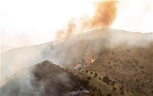 بالگرد برای مهار آتش سوزی دهرود دشتستان از شیراز اعزام شد