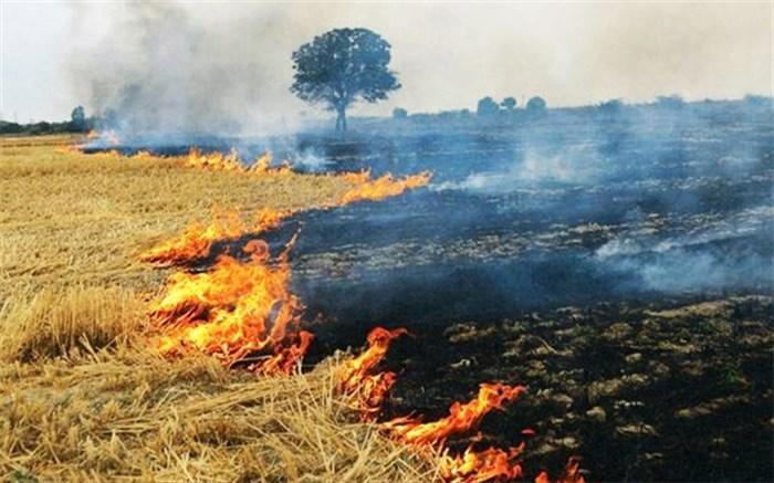 آتش زدن بقایای محصولات کشاورزی