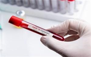 شناسایی ۵۹ مورد جدید ابتلا به کروناویروس در استان فارس و افزایش مبتلایان به ۵۷۴۶ نفر