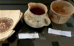 موزههای استان بوشهر بازگشایی شد