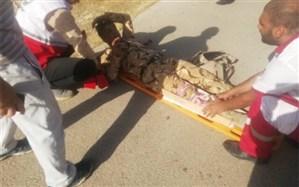 مصدومیت 3 نفر در عملیات اطفای حریق کوه خائیز