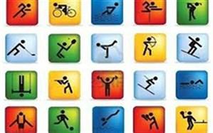 رییس جشنواره هدف:  49 هیئت ورزشی در برگزاری جشنواره هدف مشارکت کردند