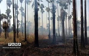 آتش سوزی گسترده در پارک حجاب اهواز