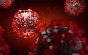 شناسایی 644 مورد جدید مبتلا به کرونا ویروس  در خوزستان