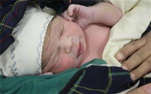 کاهش تعداد مراقبتهای بارداری در بحران کرونا