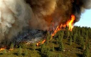 آتشزنندگان مراتع به ۱۰ سال حبس محکوم میشوند