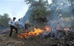 جنگلهای بلوط چهارمحال و بختیاری تاکنون از گزند آتش در امان مانده اند
