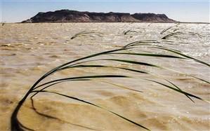 جهش تولید، حفظ محیط زیست برای توسعه پایدار ایران