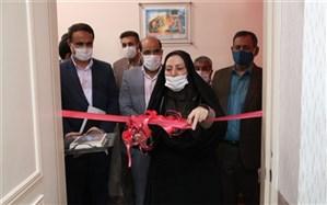 آئین افتتاحیه طرح نماد در استان یزد