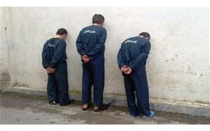 دالتون ها در مشهد دستگیر شدند