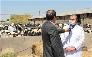 عدم کمبود واکسن بیماری تب برفکی در استان