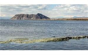 جان باختن یک هموطن در دریاچه ارومیه