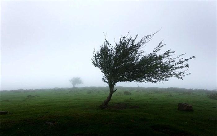 پیش بینی وزش باد شدید در استان تهران