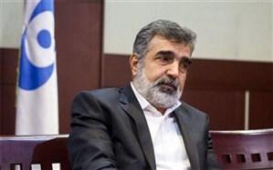 واکنش کمالوندی به تحریمهای جدید آمریکا علیه ایران