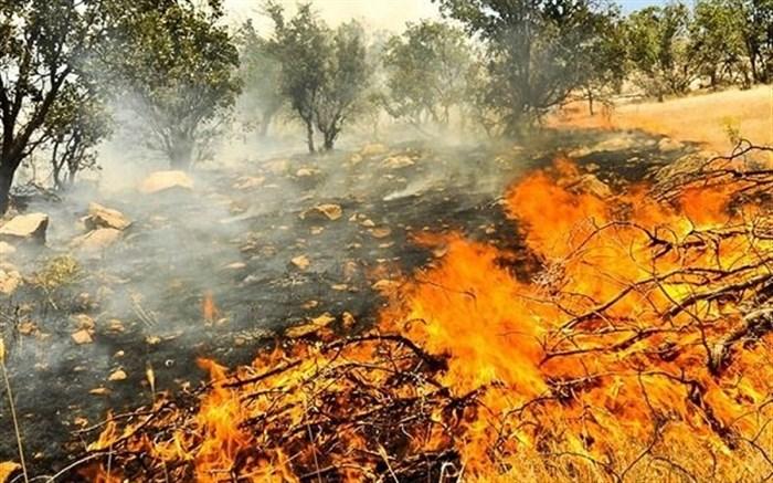 آتش سوزی در عرصههای طبیعی کشور