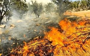 مهار آتشسوزی در  سفیدکوه