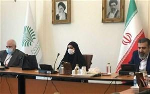 جلسه ستاد پیگیری شهادت شهیدسلیمانی برگزار شد