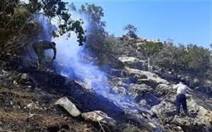مهار آتش سوزی مراتع  و جنگل های بخش لوداب شهرستان بویراحمد