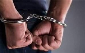 کشف ۲۰۰ فقره سرقت لوازم خودرو در تهران