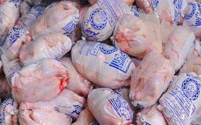 فروش مرغ منجمد