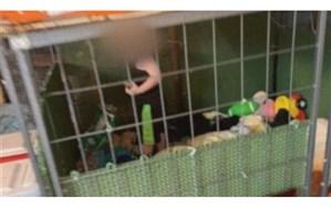 پیدا کردن کودک 18 ماهه در قفس سگ