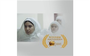 فیلم کوتاه «نمایش»در   accoladefilmfestival درخشید