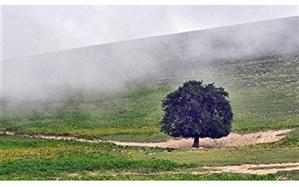 بارش باران و خنکی هوای گیلان از اواخر امروز