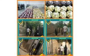توزیع ۸۸ بسته میوه در بین خانواده های کم بضاعت نیشابوری