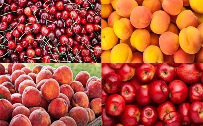 قیمت میوههای تابستانه