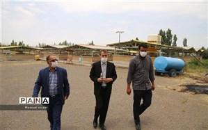 آغازعملیات بهسازی و تعمیرات اردوگاه دانش آموزی شهید ناصری میانه + فیلم