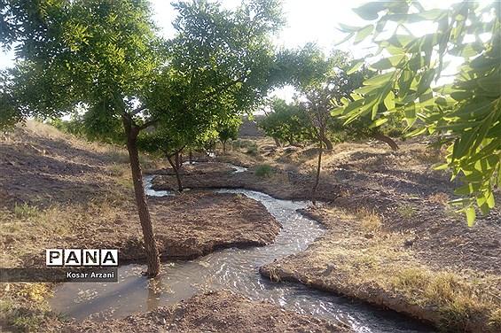 آبیاری مزارع روستا تقوک