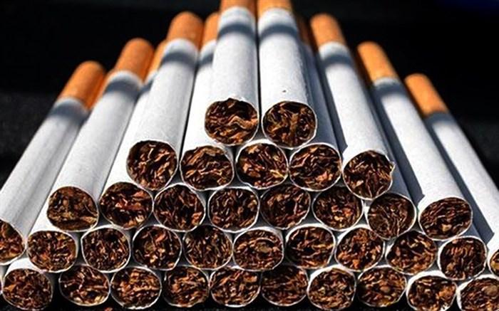 عرضهکنندگان سیگار