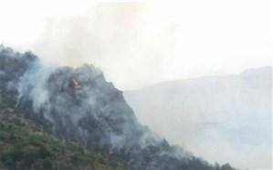 هشدار محیط زیست مازندران: آتشسوزی در کمین جنگلها و مراتع