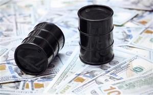 قیمت طلای سیاه افزایش یافت