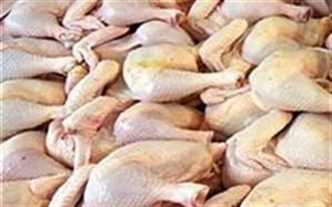 تولید 2800 تن گوشت سفید در سه ماهه اول سال