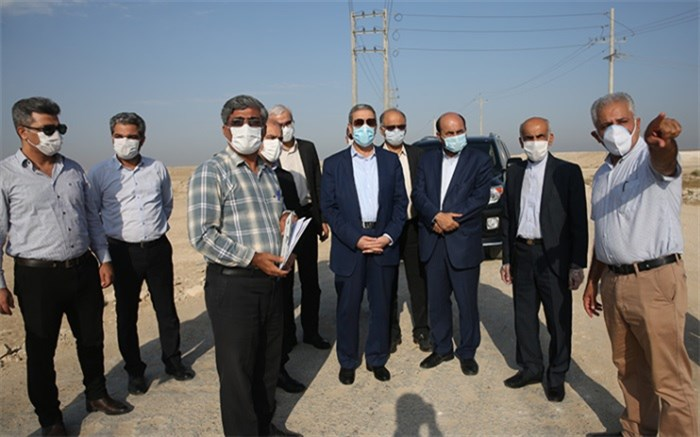 پرورش میگو ظرفیت مهم استان بوشهر برای تحقق شعار رونق تولید است