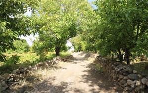 احیاء پروژه ویژه محور گردشگری قدیمی قروه تا سلطانیه