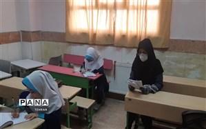 حبیبی: الگوی مصرفی استفاده دانشآموزان و معلمان از شبکه شاد ظرف یک هفته آینده اعلام میشود