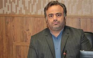 بیش از 47 هزار دانش آموز فارسی عضو شورای دانش آموزی مدارس می شوند