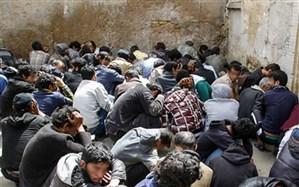 جمع آوری 90 معتاد کارتن خواب در طرح ارتقاء امنیت اجتماعی شیراز