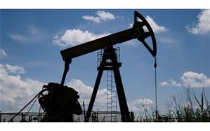 نفت سقوط کرد