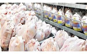 معاون وزیر صنعت: نگرانی بابت کاهش تولید مرغ نداریم