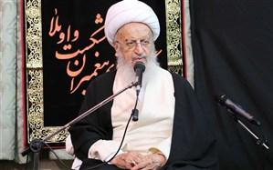 آیت الله مکارم شیرازی: نمیتوان جلوی عزاداری امام حسین(ع) را گرفت