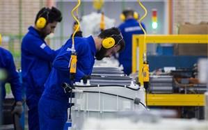 کارگران را سهامدار کارخانهها کنید