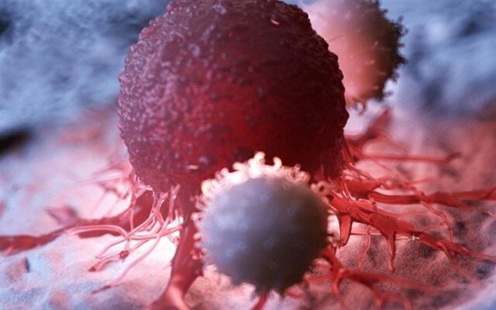 بررسی عملکرد یک ژن در بروز و گسترش سرطان