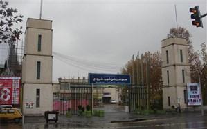 طالبیان: ورزشگاه شهید شیرودی ثبت ملی شده است